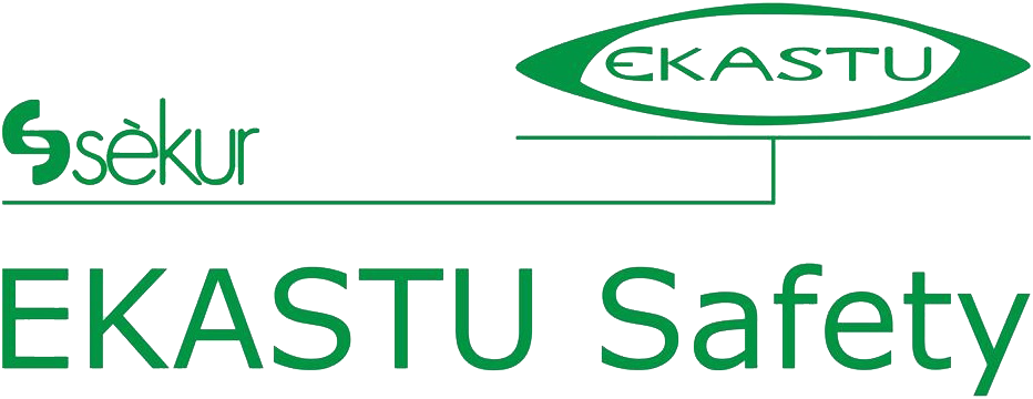 https://cas-technik.at/media/image/34/85/df/EKASTUSafetyLogo.png